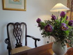 Arran Self Catering Cottages - Bluebird Cottage